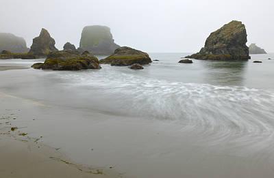 Photograph - A Foggy Morning by Loree Johnson