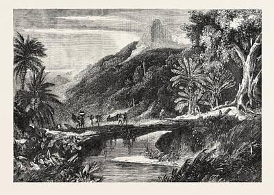 A Forest Scene In Madagascar Print by Madagascarian School