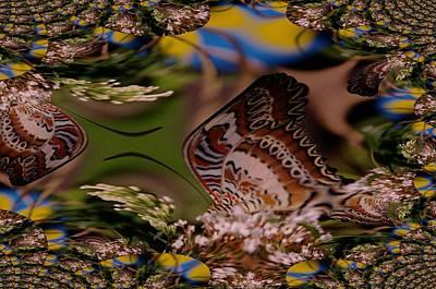A Fractual Butterfly Art Print by Jeff Swan
