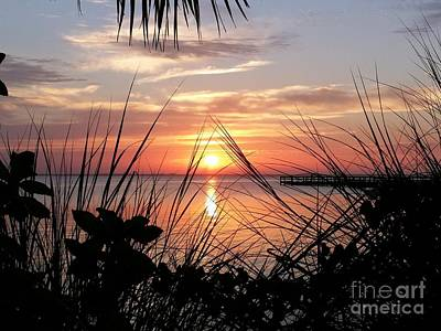 Soul Food Photograph - A Framed Sunrise  by Space Coast Skies