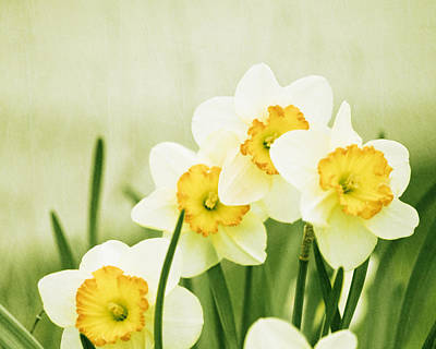 Yellow And Green Floral Photograph - A Fresh Start by Carolyn Cochrane