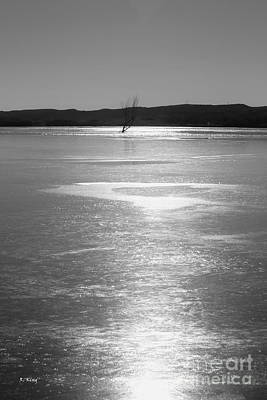 Photograph - A Frozen Lake by Roena King