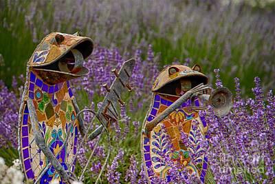 Photograph - A Garden Duets by Nicola Fiscarelli