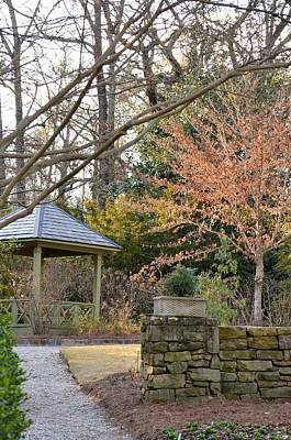 Photograph - A Garden Walk In February by Maria Urso