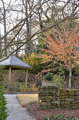 Photograph - A Garden Walk In February by Maria Urso
