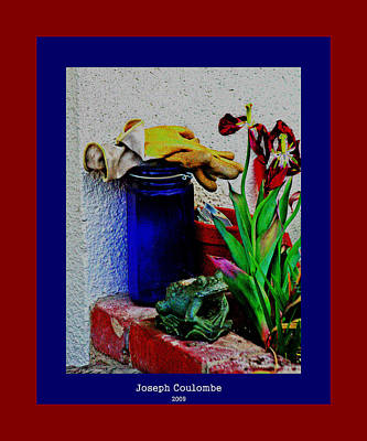 Digital Art - A Garden Wide Eyed Frog by Joseph Coulombe