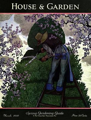 A Gardener Pruning A Tree Art Print