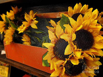 Photograph - A Gathering Of Sunflowers by Deborah Fay