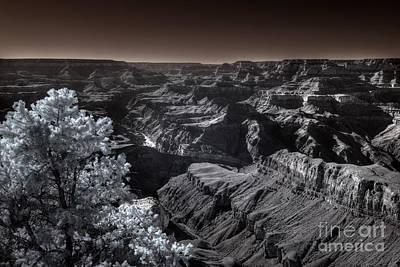 A Glimmer Of The Colorado Below Original