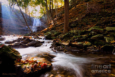 Photograph - A Glorious Autumn Morning By The Creek by Barbara McMahon