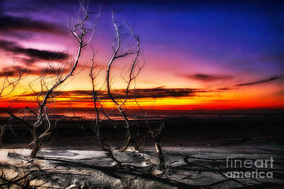A Glorious New Day I - Outer Banks Art Print by Dan Carmichael