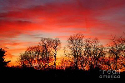 A Glowing January Sunrise Art Print by Jay Nodianos