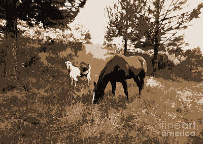 Photograph - A Goat And Her Horse by Jacqueline  DiAnne Wasson
