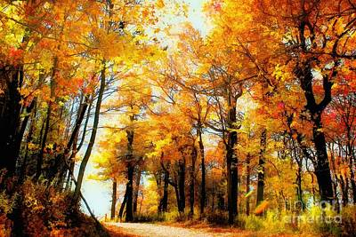 Fall Trees Photograph - A Golden Day by Lois Bryan