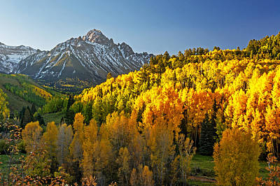 Photograph - A Golden Fall Day In Colorado by Willie Harper