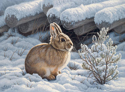 A Good Place - Bunny Art Print by Paul Krapf