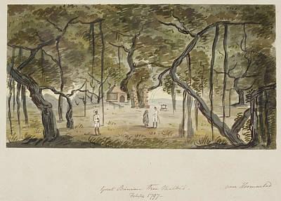 Banyan Photograph - A Great Banyan Tree At Malbed by British Library
