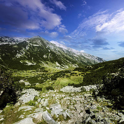 Mistletoe - A Green Valley Through Pirin Mountains by Evgeny Kuklev