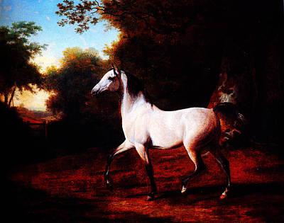 Horse In Forest Painting - A Grey Arab Stallion In A Wooded Landscape By Jacques Laurent Agasse by MotionAge Designs