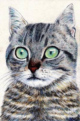 Cat Painting - A Grey Tabby by Jingfen Hwu