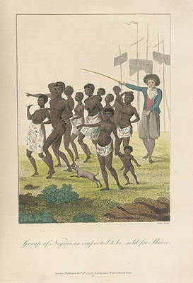 Slaves Photograph - A Group Of Negros by British Library