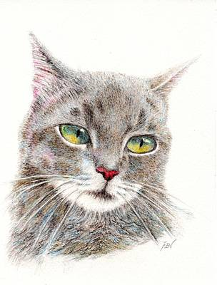 Painting - A Handsome Grey Cat by Jingfen Hwu