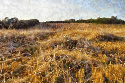 Soft Head Painting - A Harvested Field by Georgia Fowler