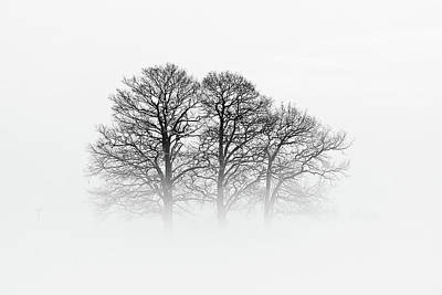 Fog Photograph - A Hazy Shade Of Winter by Oliver Buchmann