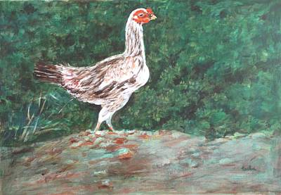 Animal Painting - A Hen by Usha Shantharam