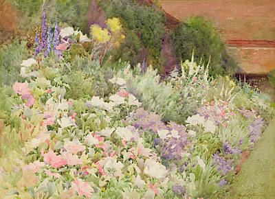 Delphinium Painting - A Herbaceous Border by Hugh L Norris