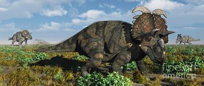 A Herd Of Albertaceratops Art Print by Mark Stevenson
