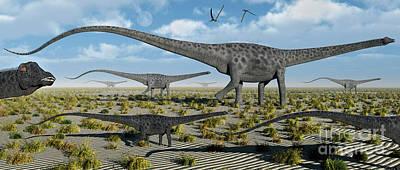 Diplodocus Digital Art - A Herd Of Giant Diplodocus Dinosaurs by Mark Stevenson