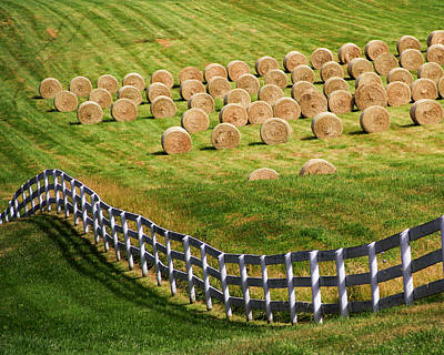 Virginia Postcards Photograph - A Herd Of Hay Bales by Guy Shultz