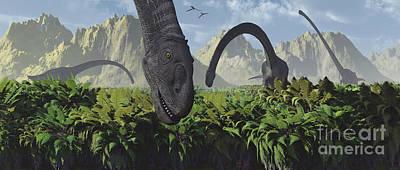 A Herd Of Omeisaurus Dinosaurs Feeding Art Print by Mark Stevenson