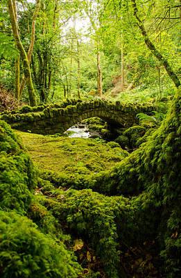 Ireland Photograph - A Hobbits Bridge by Fergal Gleeson