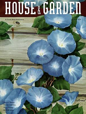 Morning Glories Photograph - A House And Garden Cover Of Flowers by Carl Broemel