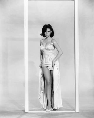 1964 Movies Photograph - A House Is Not A Home, Raquel Welch by Everett