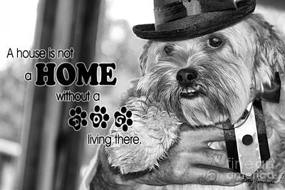 Digital Art - A House Is Not A Home Without A Dog Living There by Kathy Tarochione