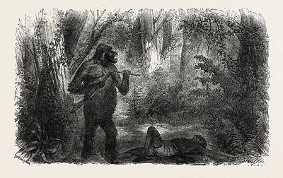 Gorilla Drawing - A Hunter Killed By A Gorilla by English School