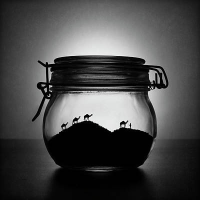 Camel Wall Art - Photograph - A Jar Of Sugar Sand by Victoria Ivanova