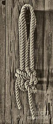 Photograph - A Knot by Olga Hamilton