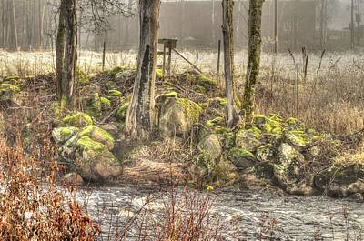 A Lake In The Woods With Mushy Stones Art Print by Tommytechno Sweden