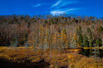 Nature Photograph - A Late October Day On Bald Mountain Pond by David Patterson