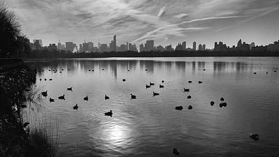 Photograph - A Lazy Day At The Reservoir by Cornelis Verwaal