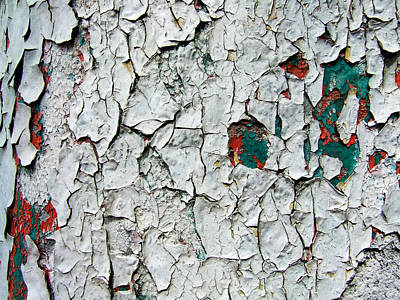 Photograph - A Legacy In Peeling Paint by Robert Knight