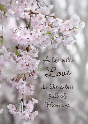 Weeping Cherry Photograph - A Life With Love by Lori Deiter