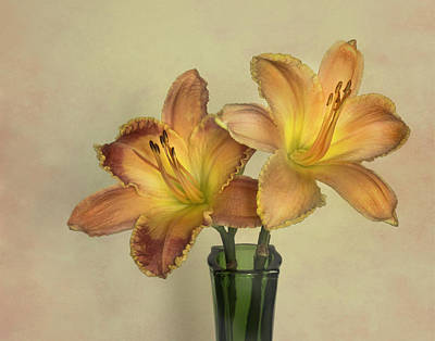 Photograph - A Lily A Day by David and Carol Kelly