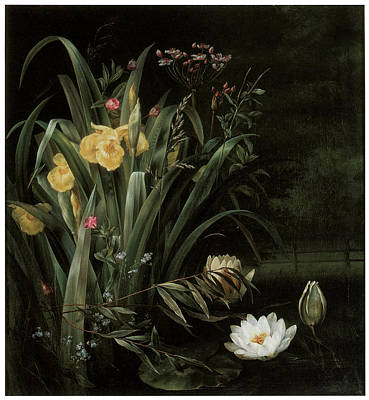 White Waterlily Painting - A Lily Pond by Hermania Sigvardine Neergard