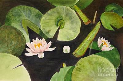 Painting - A Lily Pond by Nancy Kane Chapman