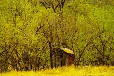 A Lincoln City Outhouse Art Print by Jeff Swan